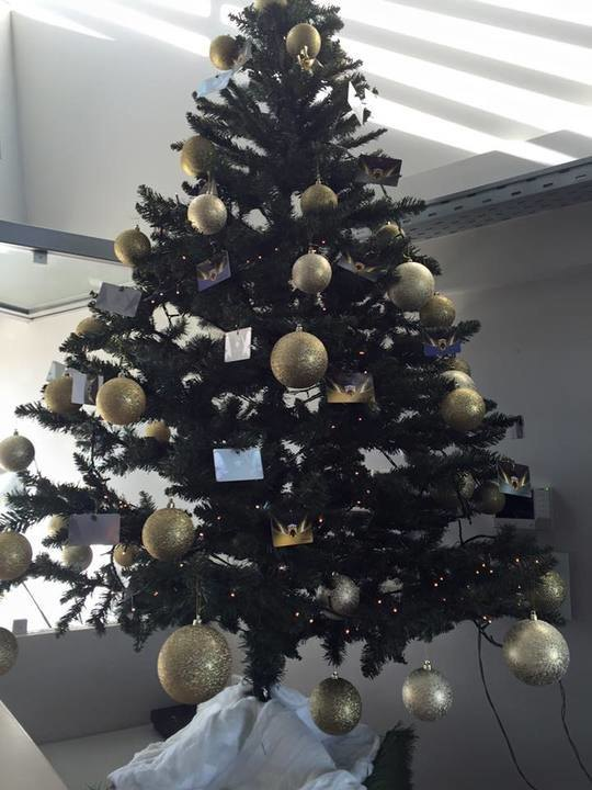 Το Χριστουγεννιάτικο δέντρο στα αποδυτήρια της ΑΕΚ (ΦΩΤΟ)