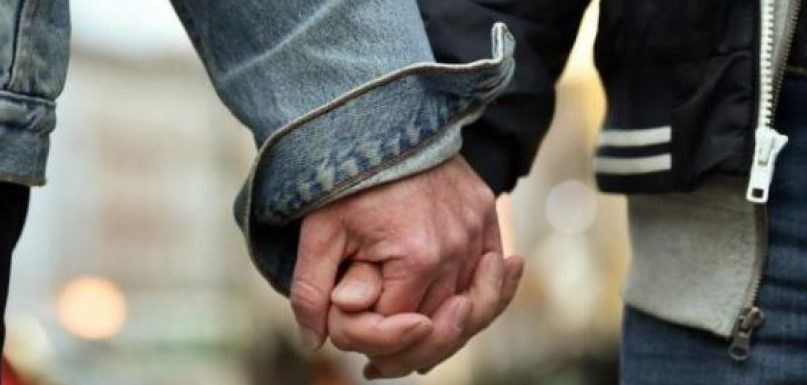 Υπέρ της υιοθεσίας από ομόφυλα ζευγάρια τάχθηκαν 55 Ακαδημαϊκοί