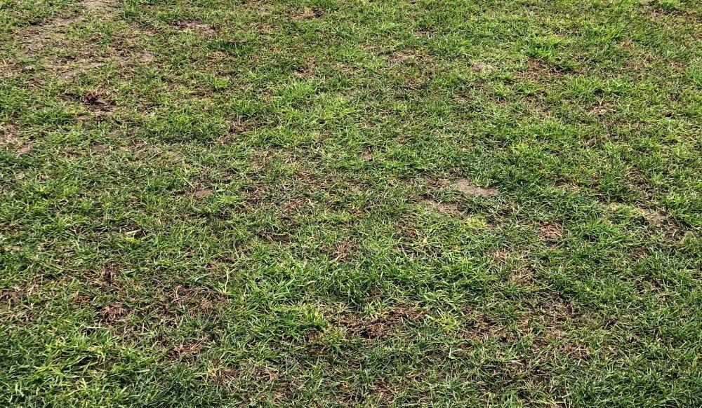 Ακατάλληλος για ποδόσφαιρο ο αγωνιστικός χώρος στη Λάρισα! (ΦΩΤΟ)