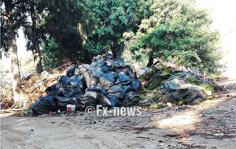 «Βουνό από σκουπίδια στο άλσος της Νέας Φιλαδέλφειας»