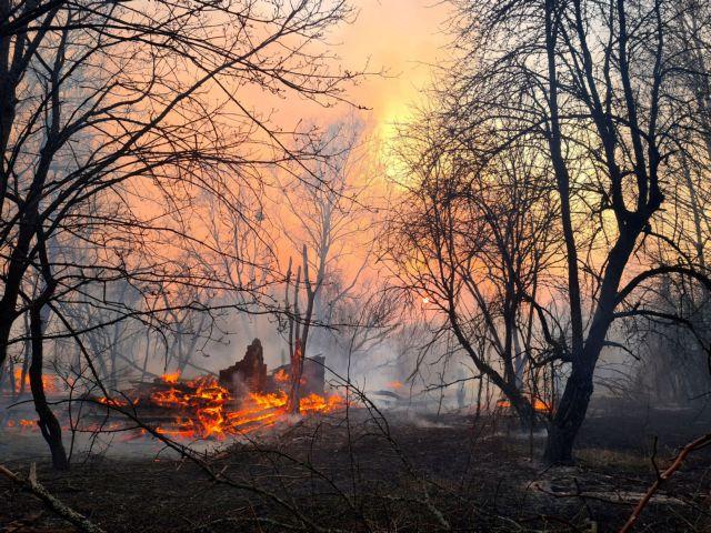 Το Twitter αντιδρά για τις πυρκαγιές στο Τσέρνομπιλ: «Πότε θα πέσουν οι ακρίδες;»