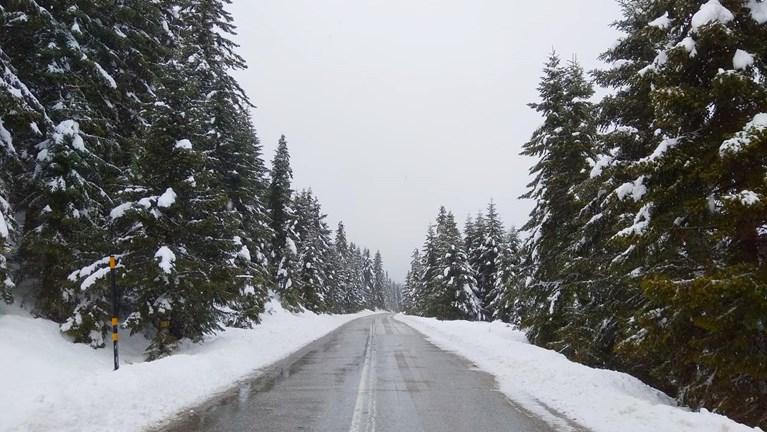 Χιόνια λίγο πριν τον καλοκαίρι - Μέχρι και 15 εκατοστά στα ορεινά των Τρικάλων