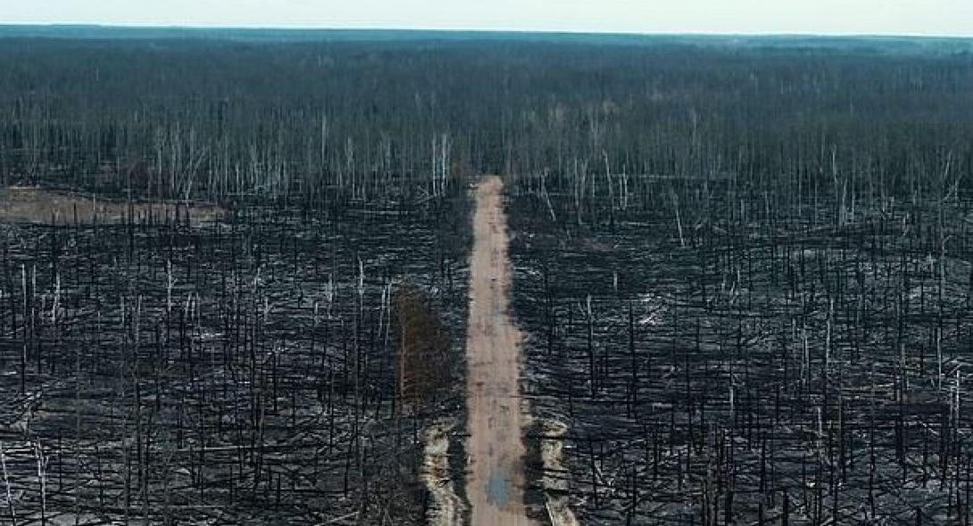 Σκηνές αποκάλυψης μετά τη φωτιά (VIDEO)