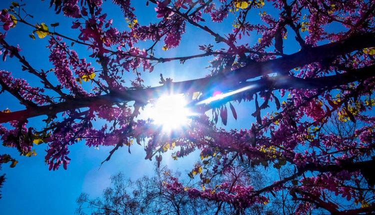 Τριήμερο του Αγίου Πνεύματος: Άνοδος της θερμοκρασίας
