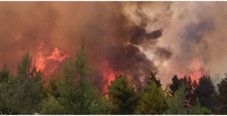 Ανεξέλεγκτη η φωτιά στο Μαρτίνο -Οι φλόγες πέρασαν την Εθνική Οδό Αθηνών-Λαμίας (VIDEO)