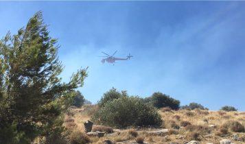 Φωτιά στη Βάρη: Εκκενώθηκαν τα χωριά SOS και ένα γηροκομείο (VIDEO)
