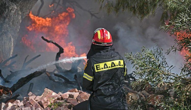 Πυρκαγιά σε δασική έκταση στα Σπάτα - Μεγάλη κινητοποίηση της Πυροσβεστικής