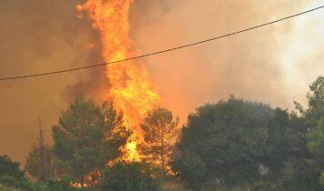 Πυρκαγιά στο Σκεπαστό της Πρέβεζας