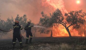 Μαίνεται η φωτιά στις Κεχριές Κορινθίας: Πύρινο μέτωπο 10 χιλιομέτρων