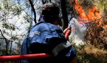 Καλαμάτα: Φωτιά σε δασική έκταση στην περιοχή Πέντε Αλώνια της Μεσσηνίας