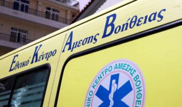 Σοκ στην Αιτωλοακαρνανία: 41χρονος πέθανε από δάγκωμα φιδιού