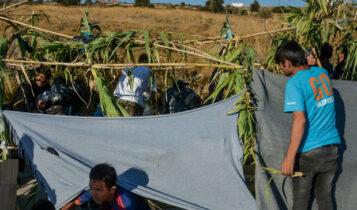 Κομισιόν: Χρηματοδοτεί νέο προσφυγικό καταυλισμό στη Λέσβο