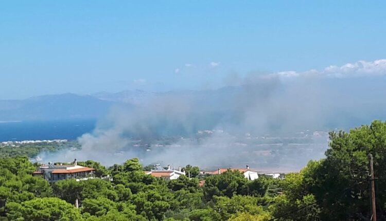 Φωτιά στην Αρτέμιδα - Μεγάλη κινητοποίηση της Πυροσβεστικής