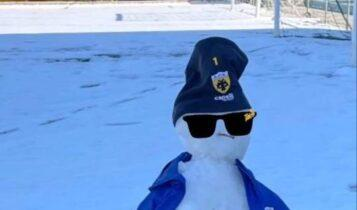ΑΕΚ: Ο «κιτρινόμαυρος» χιονάνθρωπος του Τσιντώτα (ΦΩΤΟ)