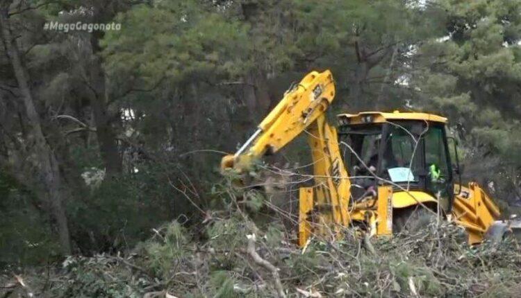 «Μήδεια»: Χωρίς ρεύμα 700 σπίτια για 6η μέρα – «Μάχη» για την αποκατάσταση της ηλεκτροδότησης (VIDEO)