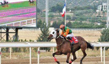 Σημαντικά κέρδη στο ΣΚΟΡ 6 των ελληνικών ιπποδρομιών