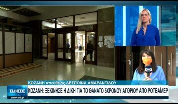 Αρχισε η δίκη για το θάνατο 5χρονου από επίθεση σκύλου στην Κοζάνη (VIDEO)