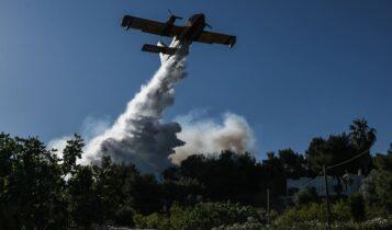 Πυρκαγιά στη Βραυρώνα Αττικής!