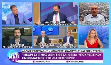 Γεωργιάδης: «Δεν μπορώ να αποκλείσω το click away στο λιανεμπόριο» (VIDEO)