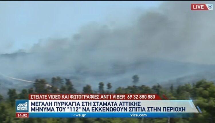 Σταμάτα: Εκτός ελέγχου η πυρκαγιά - Μήνυμα του «112» για εκκένωση κατοικιών (VIDEO)