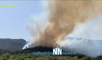 Ρόδος: Ολονύκτια μάχη με τις φλόγες – Ισχυροί άνεμοι δυσκολεύουν την κατάσβεση (VIDEO)