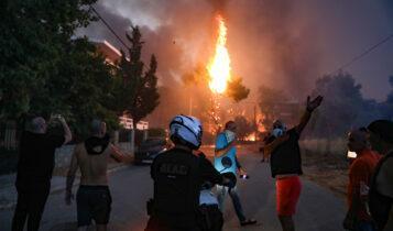 Η ΑΕΚ για τις πυρκαγιές στην Ελλάδα: «Όλοι μαζί θα το ξεπεράσουμε» (ΦΩΤΟ)