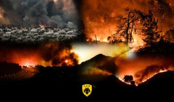 Ερασιτεχνική ΑΕΚ: «Ελλάδα Κουράγιο»