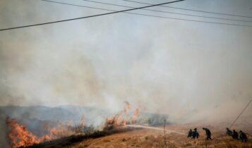 Ανω Λιόσια: Προς την Πετρούπολη κινείται η πυρκαγιά