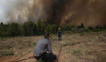 Βόρεια Εύβοια: Σε ύφεση τα μέτωπα της πυρκαγιάς