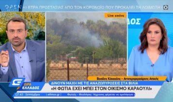 Αντιπεριφερειάρχης Αττικής: «Μάχη με τις αναζωπυρώσεις στα Βίλια» (VIDEO)