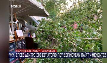Αθήνα: Δέντρο έπεσε σε μαγαζί την ώρα που δειπνούσαν Πάιατ και Μενέντεζ (VIDEO)
