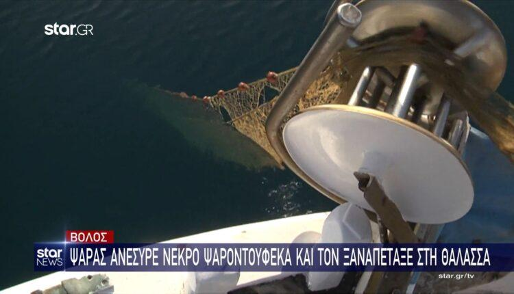 Βόλος: Ψαράς ανέσυρε νεκρό ψαροντουφεκά και τον ξαναπέταξε στη θάλασσα (VIDEO)